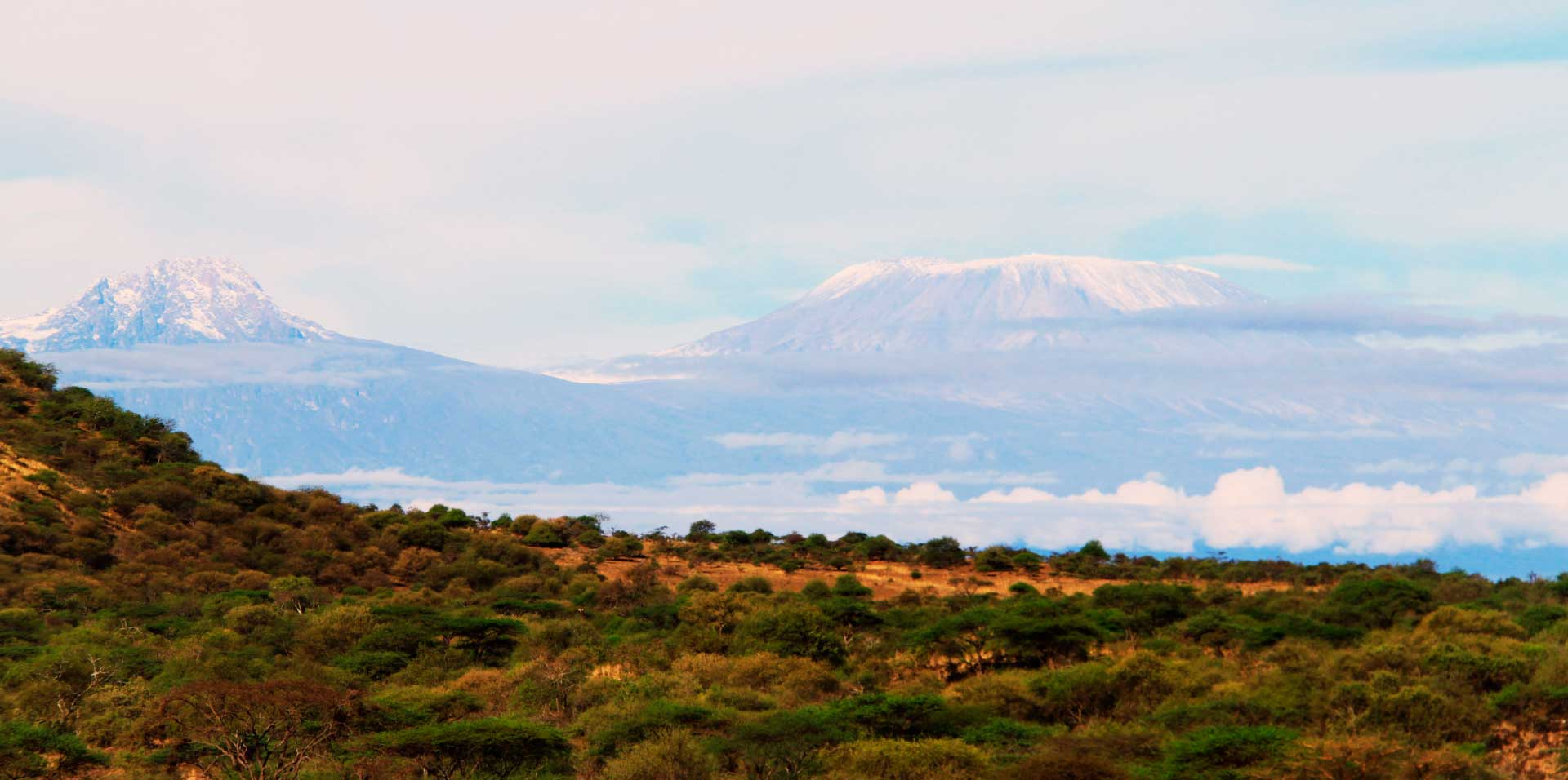 View over the African Plain with Mount Kilimanjaro in the background